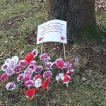 Moulton PreSchool's Remembrance Sunday Display